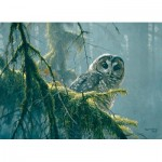 Puzzle  Cobble-Hill-85002 XXL Pieces - Mossy Branches - Spotted Owl
