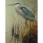Puzzle  Cobble-Hill-85029 XXL Pieces - Great Blue Heron
