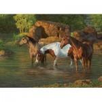 Puzzle  Cobble-Hill-85051 XXL Pieces - Horse Pond