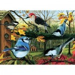 Puzzle   Blue Jay And Friends