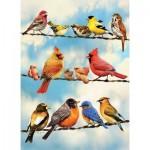 Puzzle   Blue Sky Birds