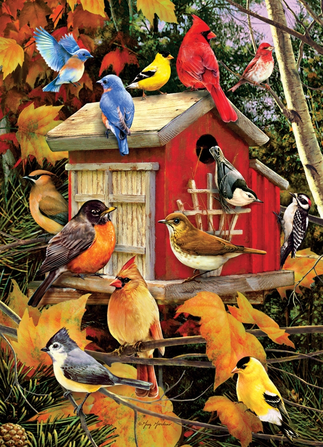 puzzle greg and company fall birds cobble hill 51803 1000 pieces jigsaw puzzles birds. Black Bedroom Furniture Sets. Home Design Ideas