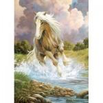 Puzzle   River Horse