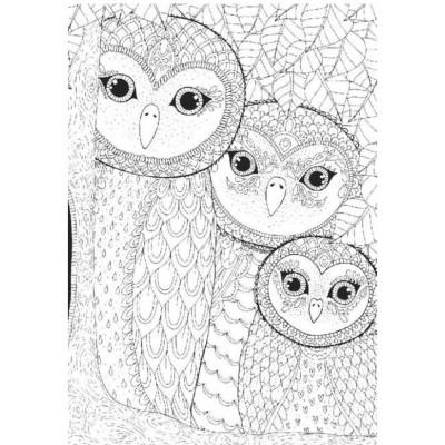 Puzzle Perre-Anatolian-3316 Owls Family
