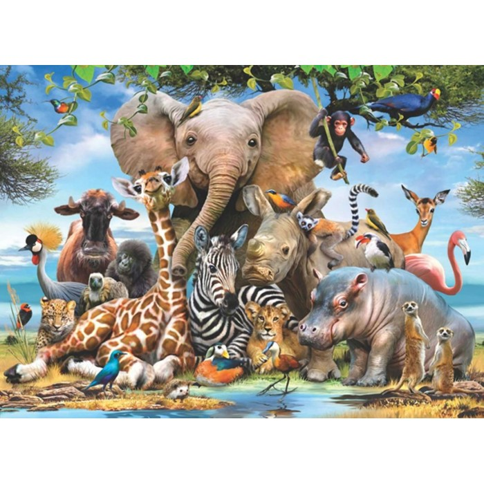 Africa Smile Puzzle 1000 pieces