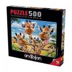 Puzzle   Giraffes' Selfie