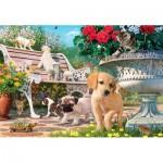 Puzzle   Pets Hide and Seek