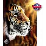 Puzzle   Wild Tiger
