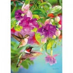 Puzzle  Piatnik-5467 Hummingbirds