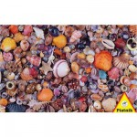 Piatnik-5663 Jigsaw Puzzle - 1000 Pieces - Seashells
