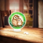 3D Puzzle - Sphere Light - Owls and Kittens in the Green Forest