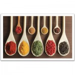 Pintoo-H1469 Plastic Puzzle -Collection of spices in wooden spatulas