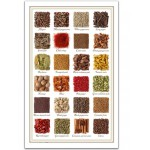 Pintoo-H1470 Plastic Puzzle - Collection of spices