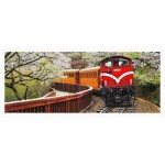 Pintoo-H1483 Plastic Puzzle - Forest Train in Alishan National Park