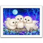 Pintoo-H1953 Plastic Puzzle - Kayomi - Owl Triplets