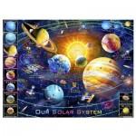 Pintoo-H2133 Plastic Puzzle - Adrian Chesterman - Solar System