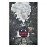 Pintoo-H2159 Plastic Puzzle - The Steam Train, Switzerland