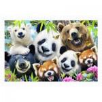 Puzzle  Pintoo-H2315 Howard Robinson - Selfie Bear Essentials