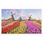 Puzzle  Pintoo-H2324 Zaanse Schans, The Netherlands