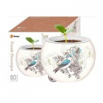 Pintoo-K1006 3D Puzzle - Flower Pot - Singing Birds and Flowers