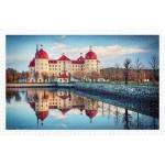 Puzzle   Moritzburg Castle, Germany