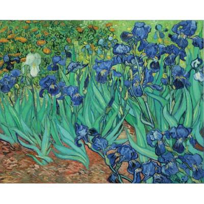 Puzzle Pomegranate-AA331 Van Gogh Vincent - Iris