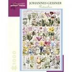 Puzzle  Pomegranate-AA998 Johannes Gessner - Pentandria