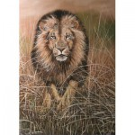 Puzzle  PuzzelMan-238 Nico Bulder : The Lion