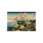 Puzzle  Puzzle-Michele-Wilson-A245-500 Hokusai : Goten Hill