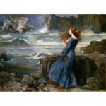 Puzzle  Puzzle-Michele-Wilson-A266-650 Waterhouse John William - The Storm