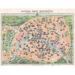 Puzzle  Puzzle-Michele-Wilson-A329-500 New Plan, monumental Paris