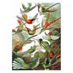 Puzzle-Michele-Wilson-A539-500 Wooden Jigsaw Puzzle - Ernst Haeckel - Colibris