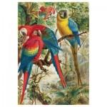 Hand-Cut Wooden Puzzle - Brehm Parrots