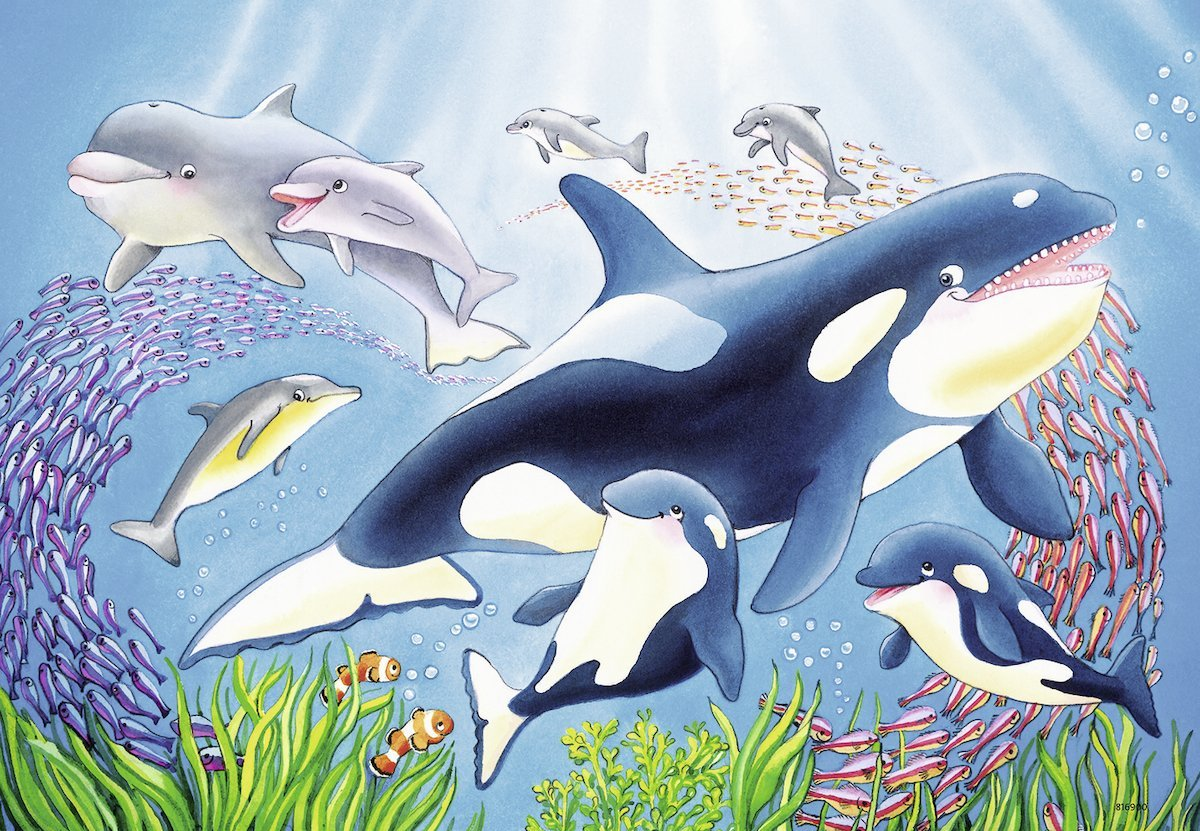 2 jigsaw puzzles colorful underwater world ravensburger 07815 24