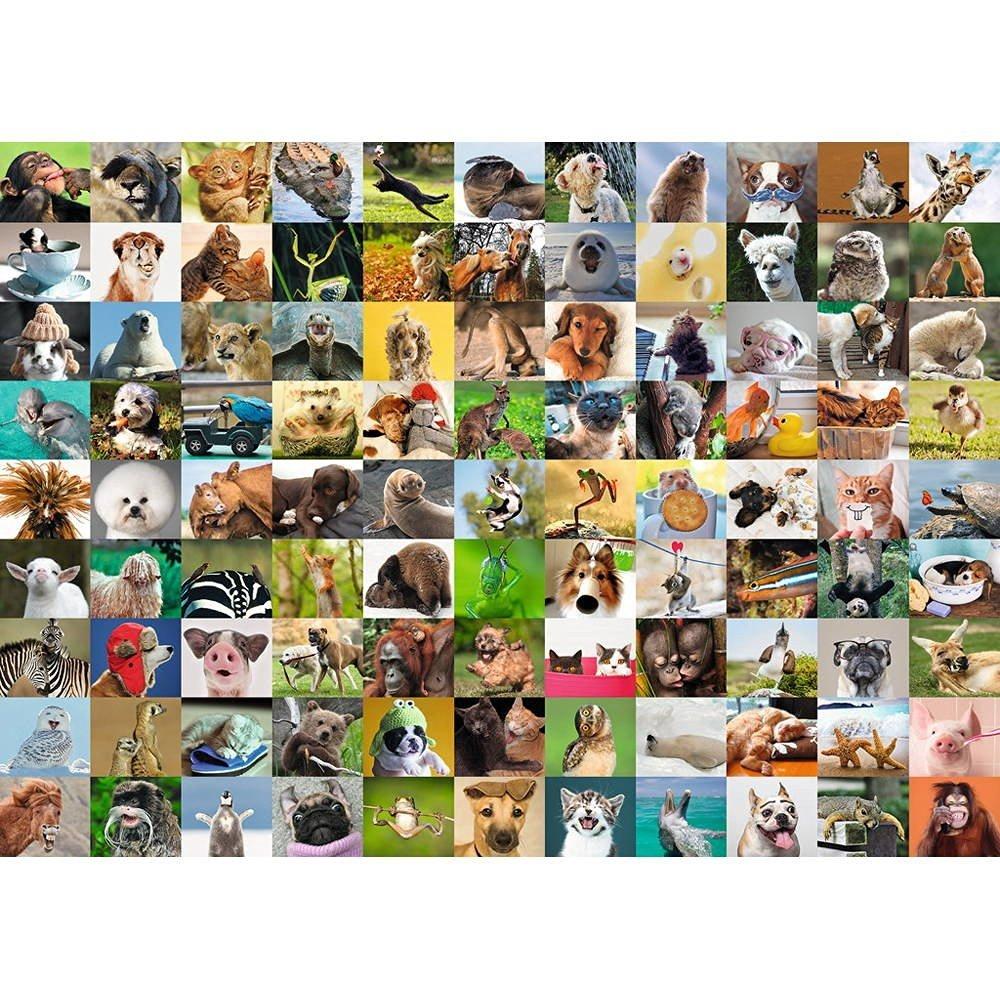 Puzzle 99 Funny Animals Ravensburger