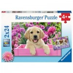 Ravensburger-05029 2 Puzzles - Sweet Friends