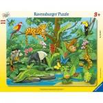 Ravensburger-05140 Frame Puzzle - Animals of the Rainforest