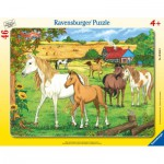 Ravensburger-06646 Frame Puzzle - Horses on the meadow