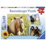 Ravensburger-08011 3 Jigsaw Puzzles - Horses