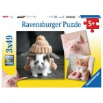 Ravensburger-08028 3 Puzzles - Funny Animal Portraits