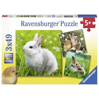 Ravensburger-08041 3 Puzzles - Cute Bunny