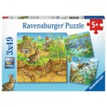 Ravensburger-08050 3 Puzzles - Animals in their Habitats