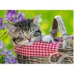 Puzzle  Ravensburger-10539 Kitten
