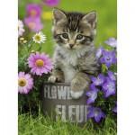 Puzzle  Ravensburger-10847 Kitten amongst the Flowers