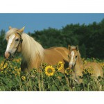 Ravensburger-12628 Jigsaw Puzzle - 200 Pieces - Maxi - My Horse
