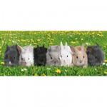 Ravensburger-12696 Jigsaw Puzzle - 200 Pieces - XXL - Panoramic - Rabbit Parade