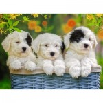 Puzzle  Ravensburger-12765 XXL Pieces - Cuddly Puppies