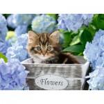 Puzzle  Ravensburger-12894 XXL Pieces - Little Kitten
