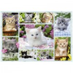 Puzzle  Ravensburger-14196 Kittens in their baskets