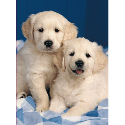 Puzzle Ravensburger-14238 Golden Retriever